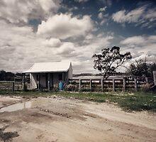 Maurice's Hut at Horse Paddock Bay by yolanda