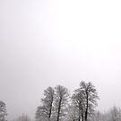 snowy by Mustafa UZEL