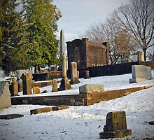 Old Gray Cemetery-1901 by Michael Byerley