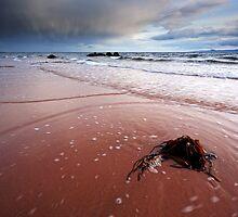 Seamill beach by Grant Glendinning