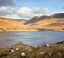 Killary Fjord Galway/Mayo Ireland. by MickBourke