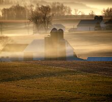 Misty Morning Farms by KellyHeaton