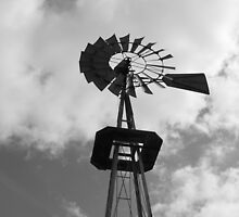 Wind Vane by Tony Wilder