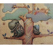birds and butterflies Photographic Print