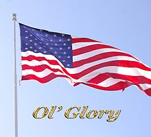 ol' glory by dedmanshootn