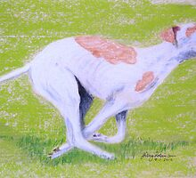 Greyhound running by Hilary Robinson