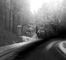 ...on the road... by Renata Vogl