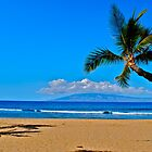 On a Beach in Hawaii by bamorris