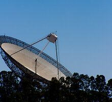 The Dish 2 by tunna