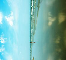 Reflections by Ann  Klein