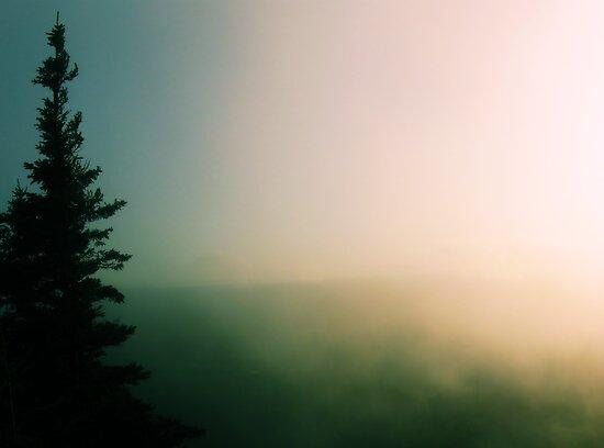 Mountain Fog by ruralguerre