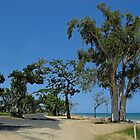 South Mission Beach by STHogan