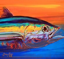 Tuna Portrait- Blufin Tuna Fishing Art by Mike Savlen by Mike Savlen