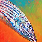 Bonefish Portrait- Bone fish art by Mike Savlen by Mike Savlen