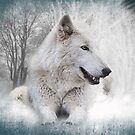 White Wolf by Kathy Baccari