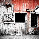 Red Barn Door by Marcia Rubin
