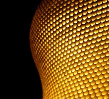 Selfridges Building - Birmingham by Ross Jukes