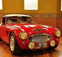 1956 Austin Healey 100 BN Le Mans by resin8n