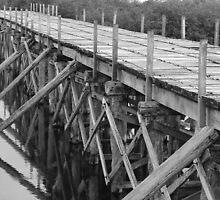 Mexico Sian Kaan Bridge by scaff