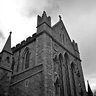 St Patrick's Cathedral, Dublin by Lisa Hafey