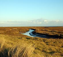 Dovercourt Marshland by Stan Daniels