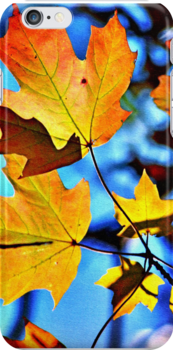 Autumn Leaves by Robin Lee