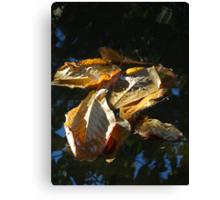 Leaves - Hojas Canvas Print
