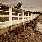 Bridge the Gap by Malik Jayawardena