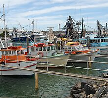 The Fishing Fleet, Coffs Harbour, NSW by Adrian Paul