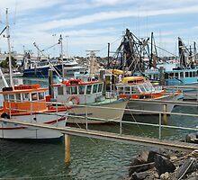 The Fishing Fleet, Coffs Harbour, NSW by Adrian Paul
