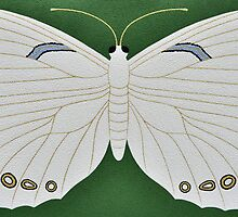 Innocence  ( White morpho butterfly ) by Trudi Hipworth