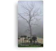 Prehistoric Scenery - Mt Wilson NSW Australia Canvas Print