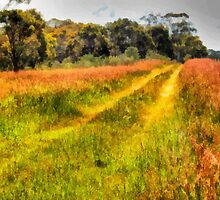 A Country Track by Eve Parry