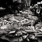 Fish for sale at Barcelona's Las Ramblas market by Nicole Shea