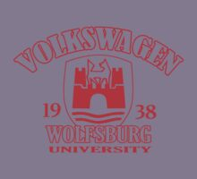 Wolfsburg University (red) by axesent