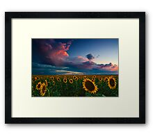 Skies Of A Summer Sunset Framed Print