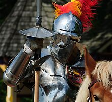 Knight in shinning armour by woodnimages