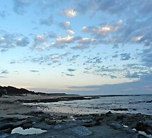 Cape Paterson Christmas Eve 2011 by Jan Legg