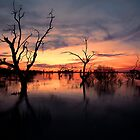 Lake Menindee Sunset  by Malcolm Katon