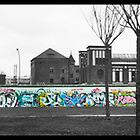 The Berlin Wall by Tim Topping