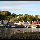 Tobermory Bay  by Julie Paterson