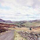 Glen Isla from the Kilry Hill by Joyce Grubb