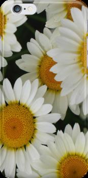 Happy Daisy  © by JUSTART