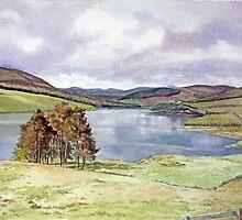 The Backwater Dam, Glen Isla, Angus by Joyce Grubb