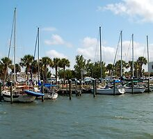 Fort Pierce Marina by Shawnuffdigital