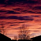 Sunset Viewed From Condo Backyard by Sandra Foster