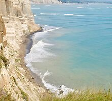 coast at Cape Kidnappers by Anne Scantlebury
