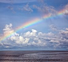 Barrier Reef Rainbow by David Wachenfeld