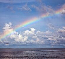 Barrier Reef Rainbow by David Wachenfeld