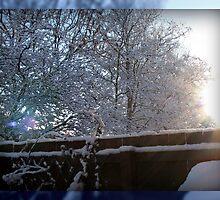 Sun's Rays on Snow by BlueMoonRose